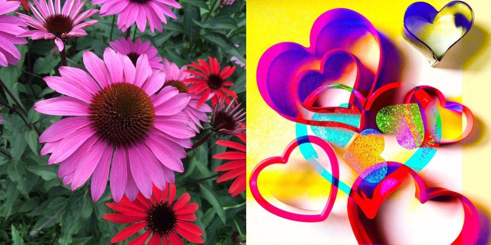 neon heart & flower.jpg