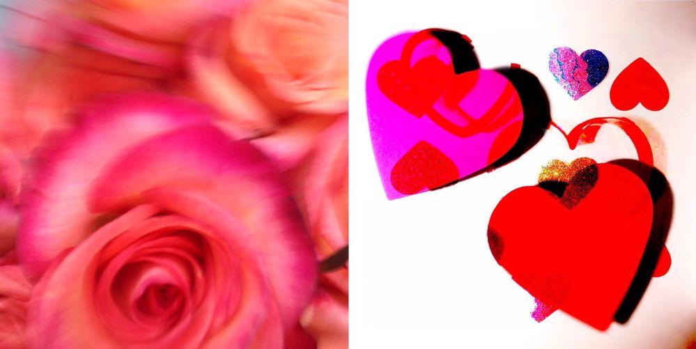 rose & hearts.jpg