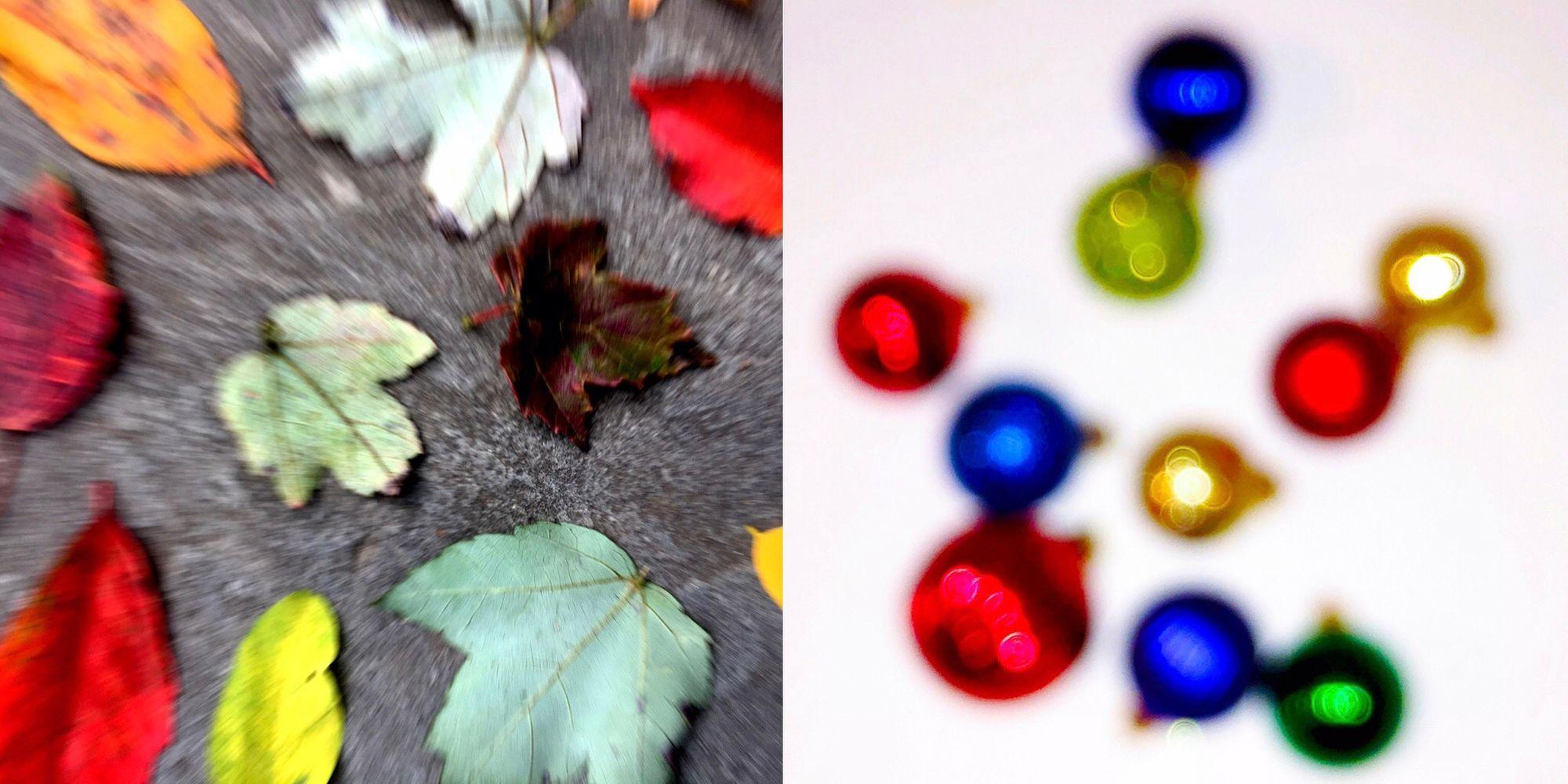 xmas and leaves.jpg