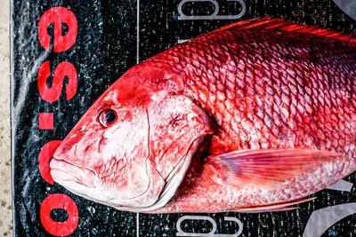 Fishing_26.jpg
