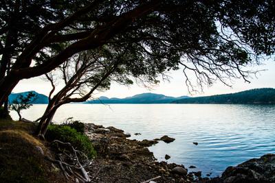 Orcas_Island_20.jpg