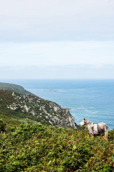 Cornwall_17.jpg