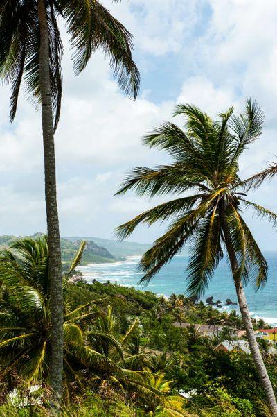 Barbados_36.jpg