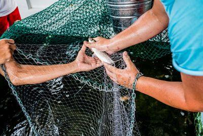 Fishing_5.jpg