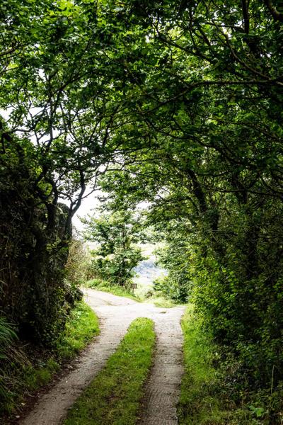 Cornwall_10.jpg