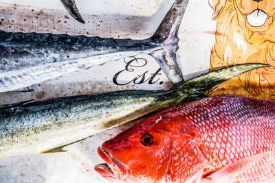Fishing_28.jpg