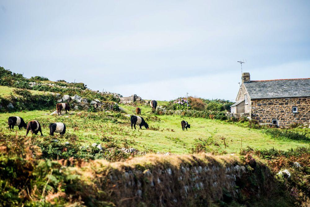 Cornwall_16.jpg