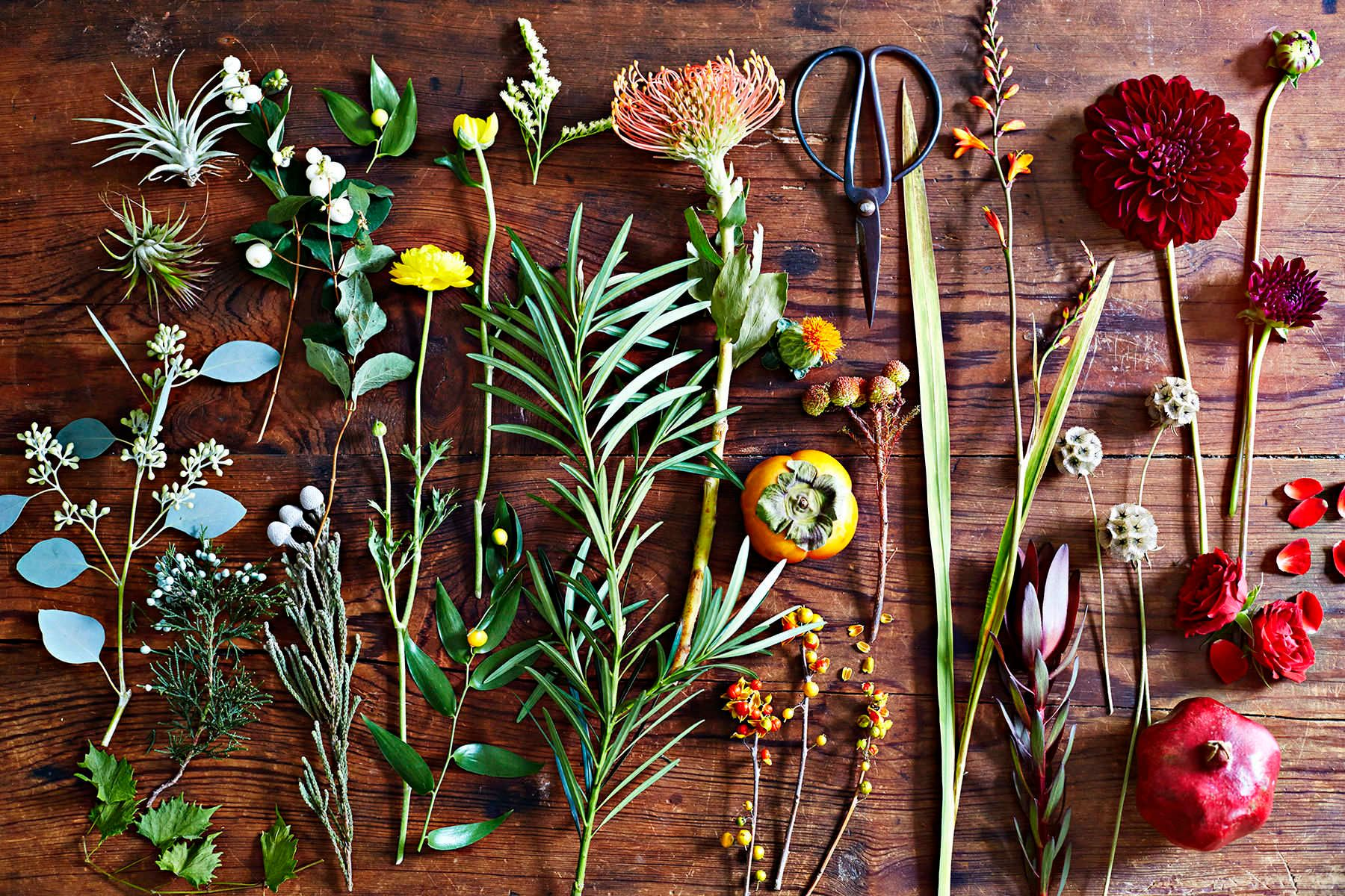 1rhome_gardening1083