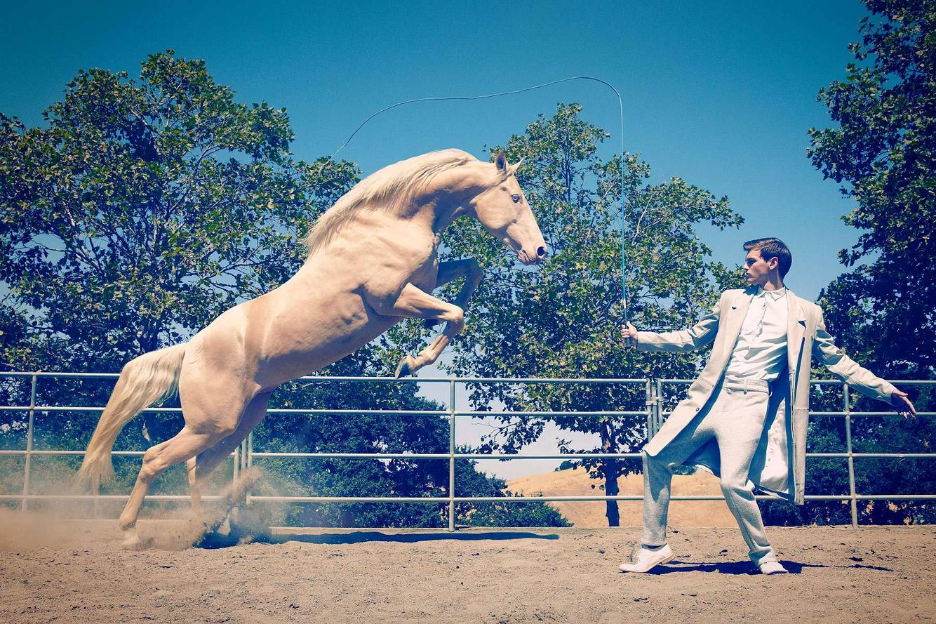 1wild_stallions_a.jpg