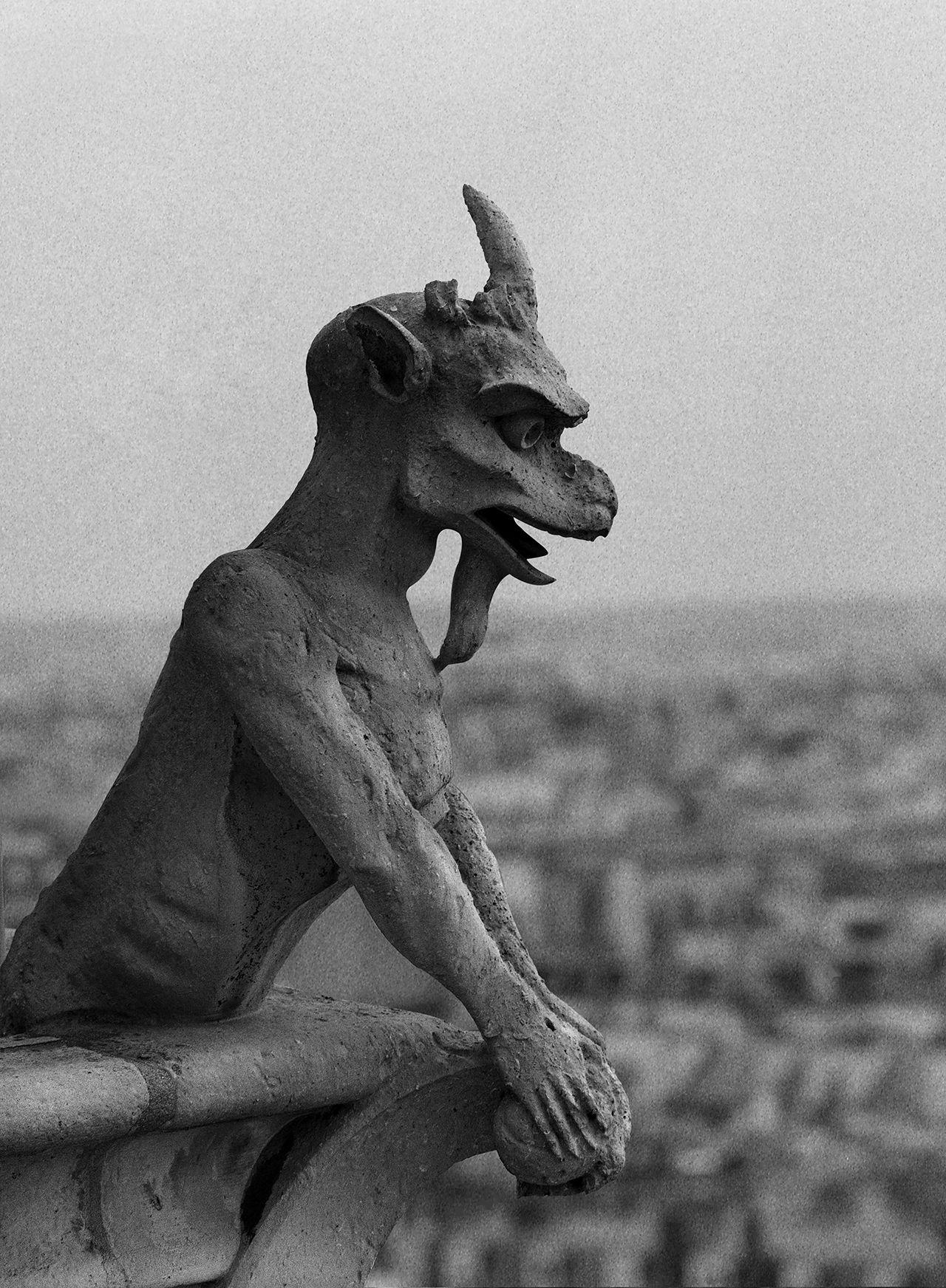 Notre Dame Paris 2.jpg