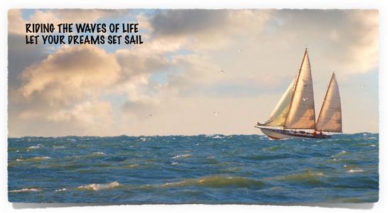 3_0_772_1set_sail.jpg