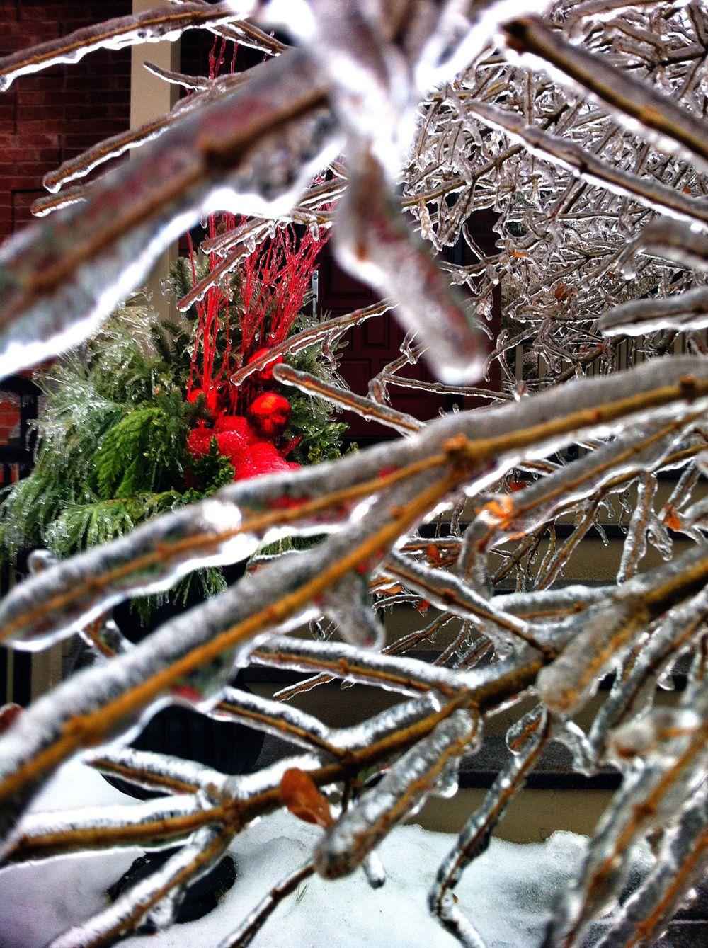 Icestorm-TO-2013.jpg