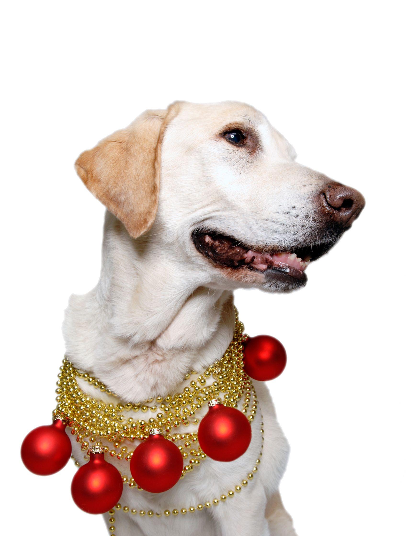 hudson-christmas-balls.jpg