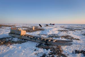 Komatik on the tundra