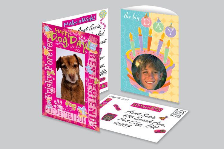 Dog Birthday, The Big Day