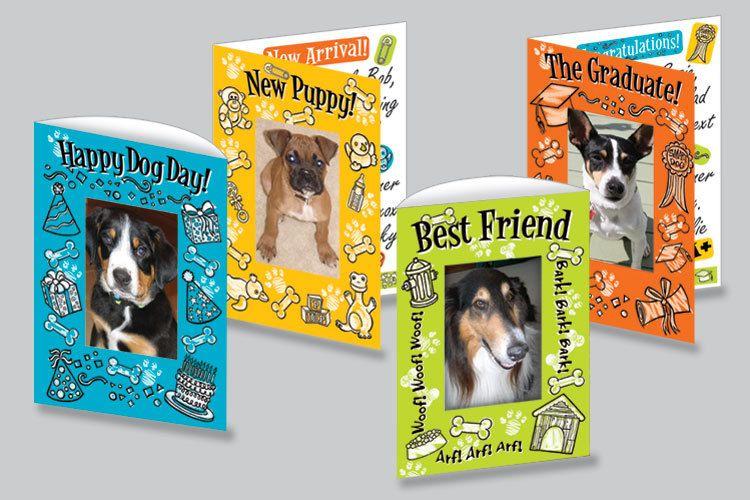 Pet Photo Card Set