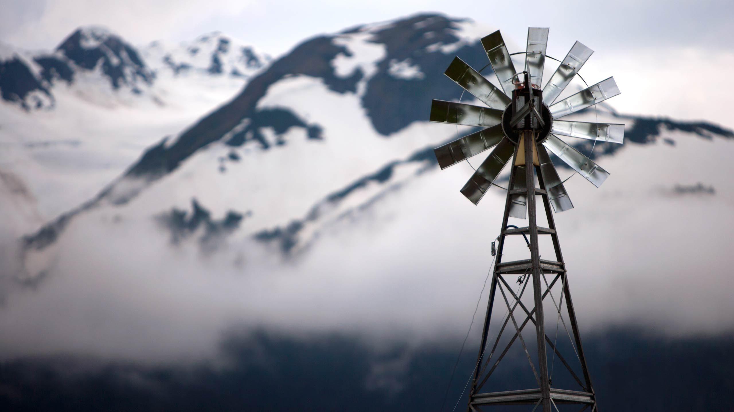 1windmill1.jpg