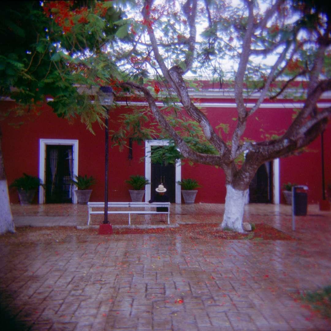 Mexico_Valladolid 8.jpg