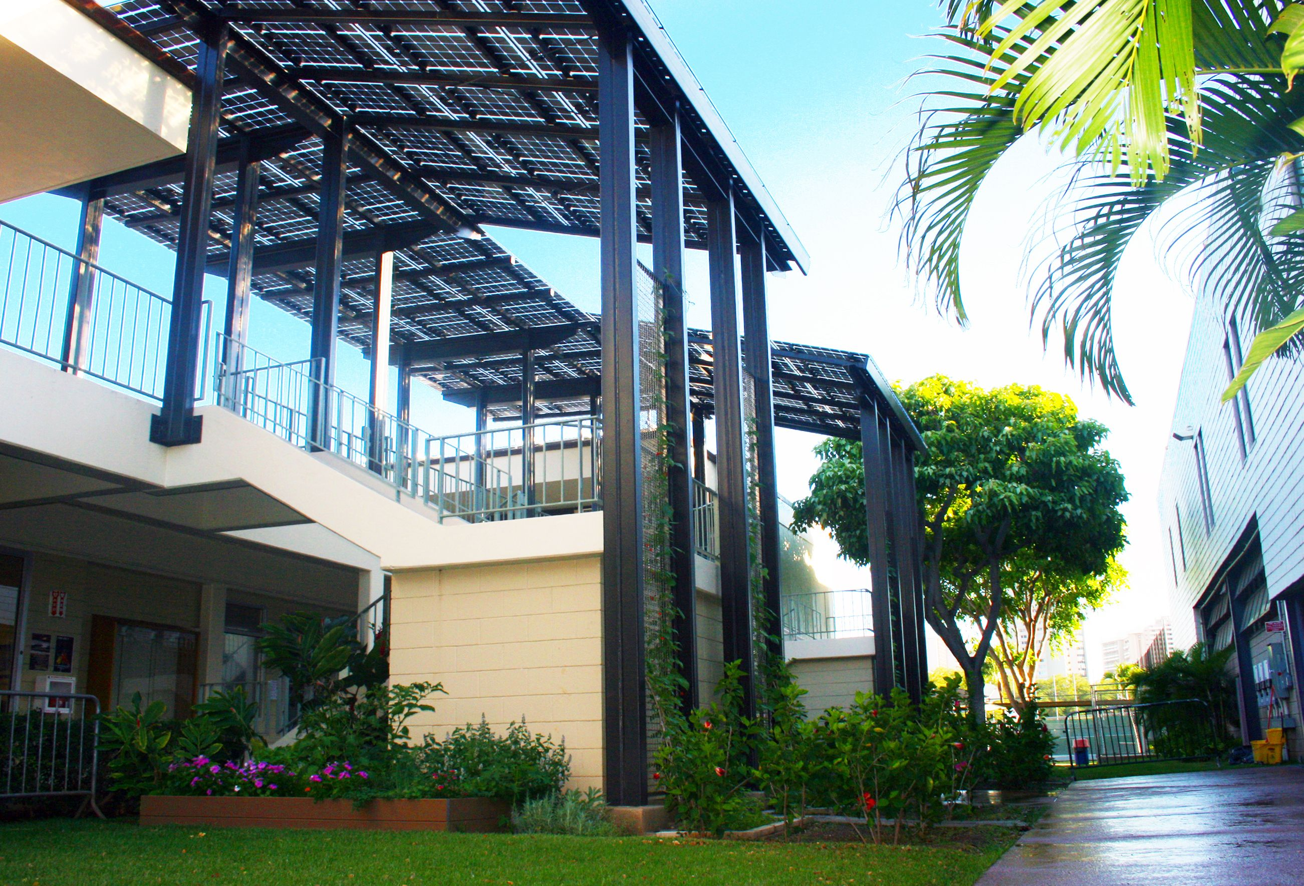 Iolani School Canopies