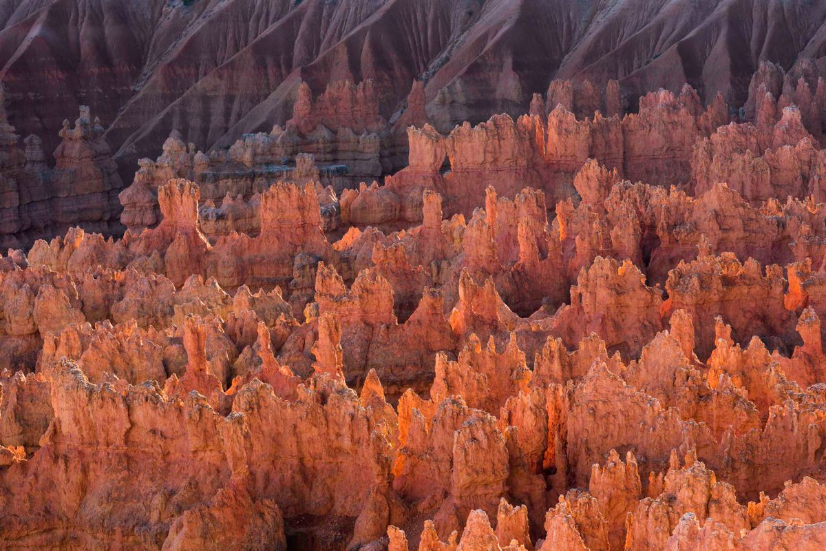 Afternoon Hoodoos Bryce Canyon National Park_.jpg