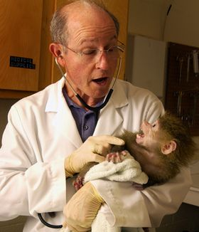 Scientist and Baboon Baby