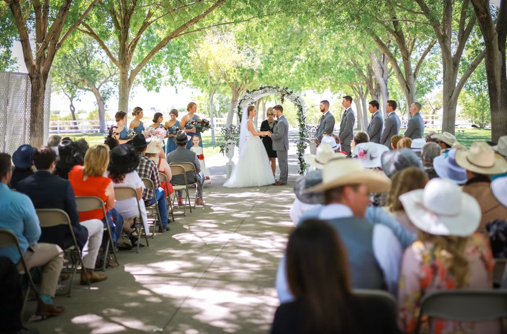 Wedding ceremony in the park