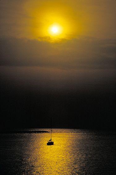 Gulf Coast Sunset & Sailboat - Tampa, Florida