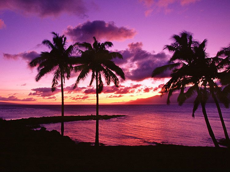 Peaceful Kapalua Sunset - Maui, Hawaii