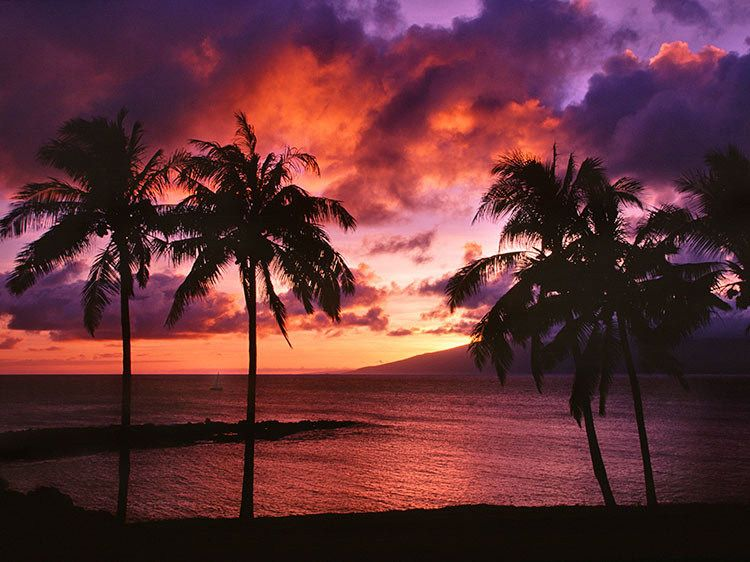 Fiery Kapalua Sunset - Maui, Hawaii