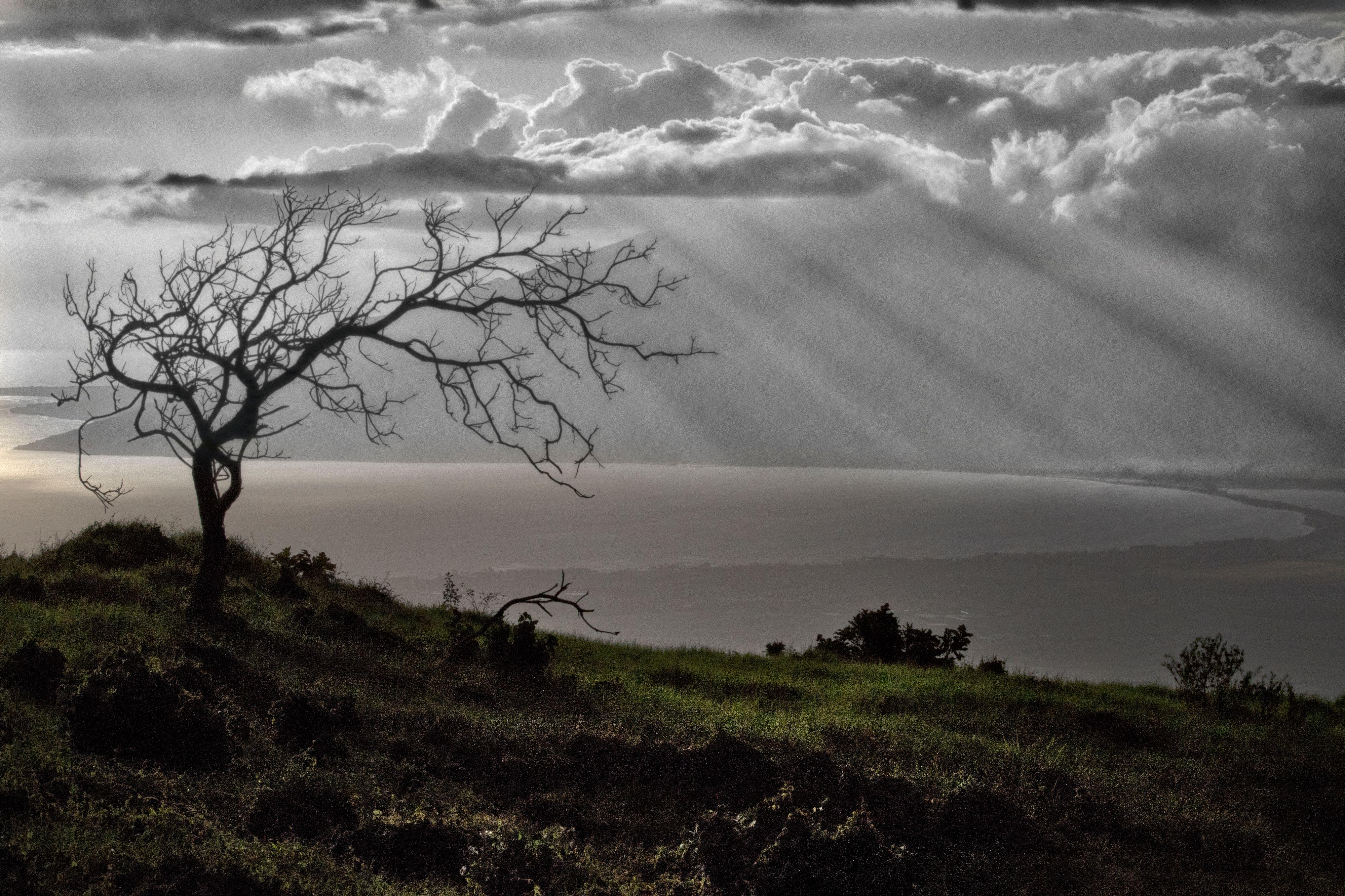 Maui-Landscapes1179.jpg