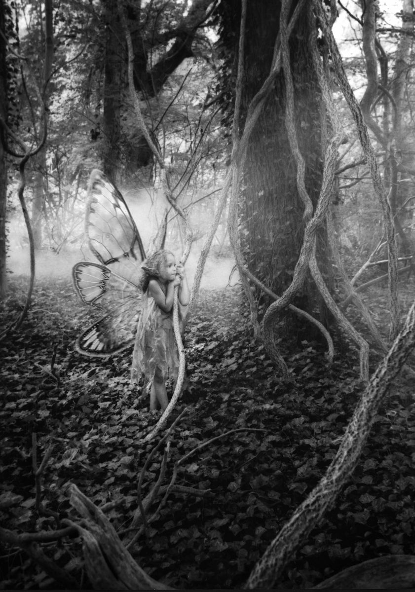1r190_vine_faerie.jpg