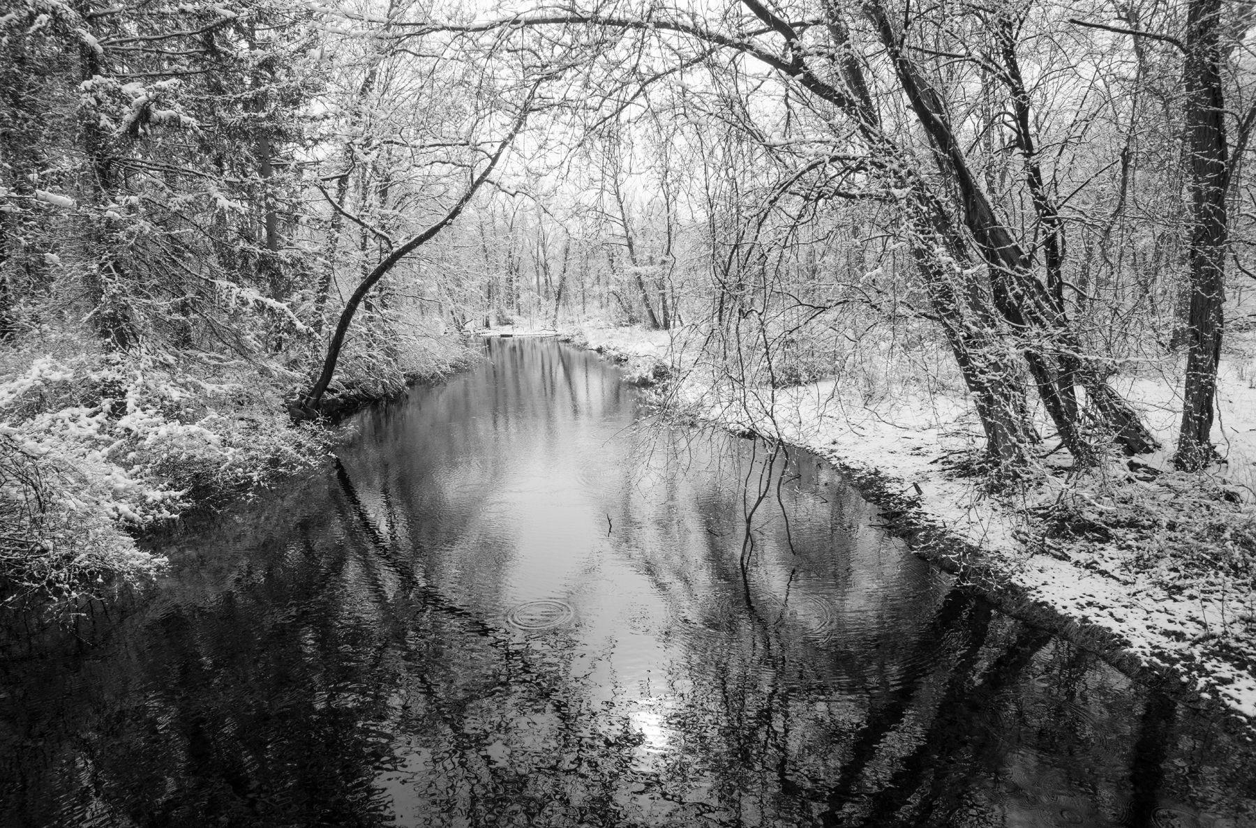 Westport Winter Stream.jpg