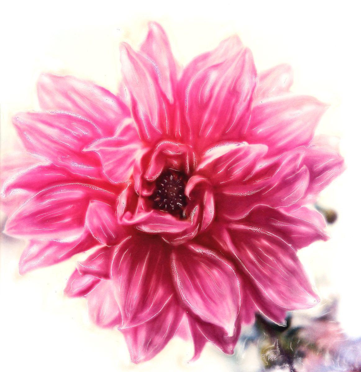 1pinkflower.jpg