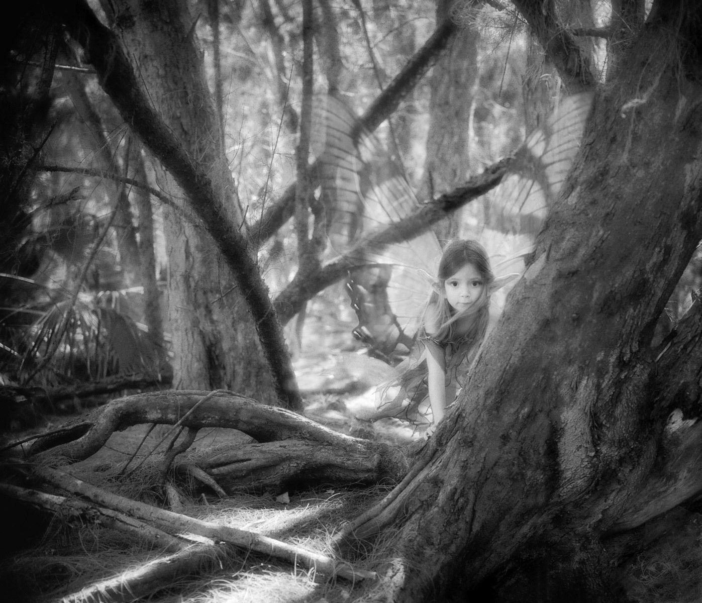 1r161_peering_faerie.jpg