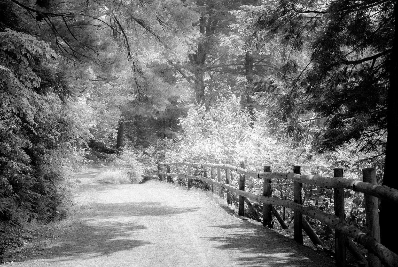 1ir_path.jpg