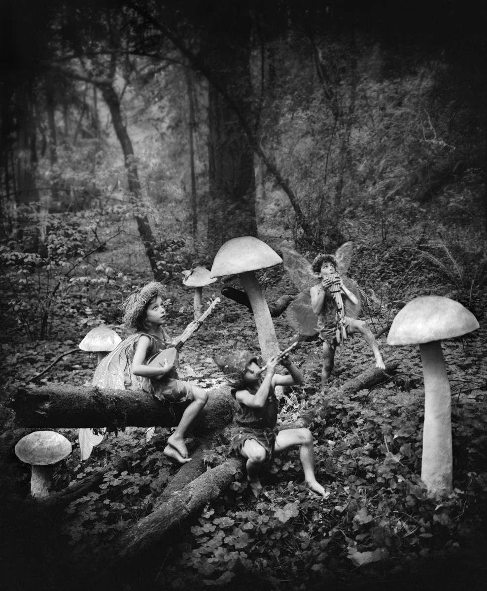 1r135_mushroom_faeries.jpg