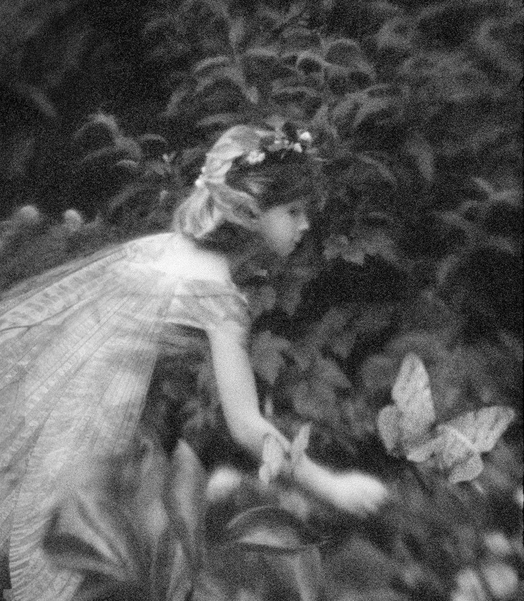 1r112_chasing_butterfly.jpg