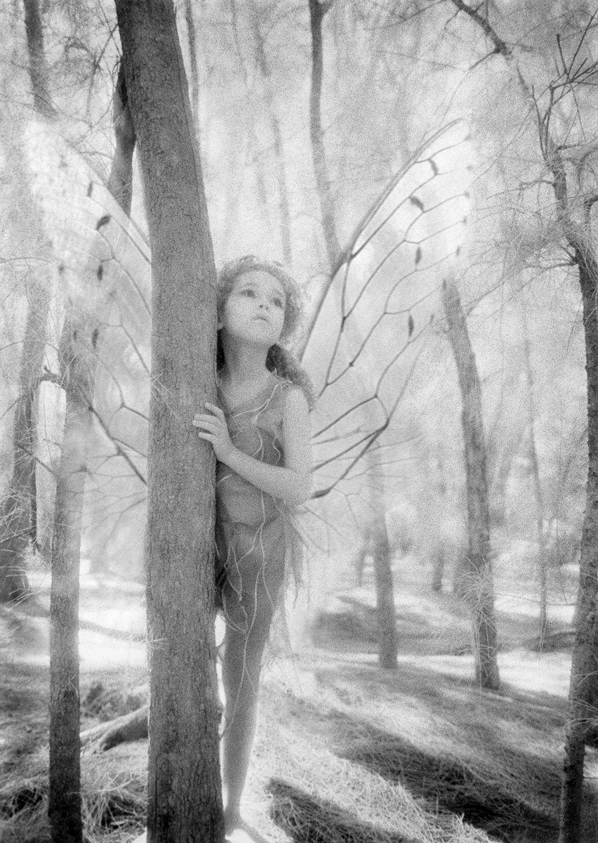 1r134_longing_fairie.jpg