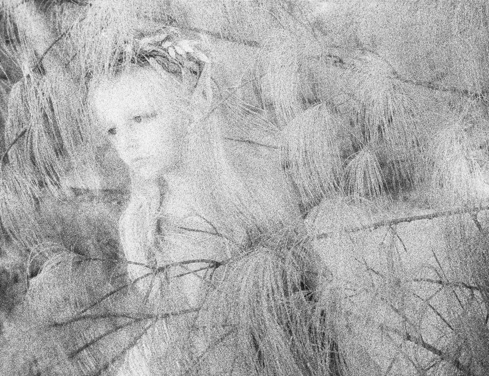 1r156_white_pine.jpg