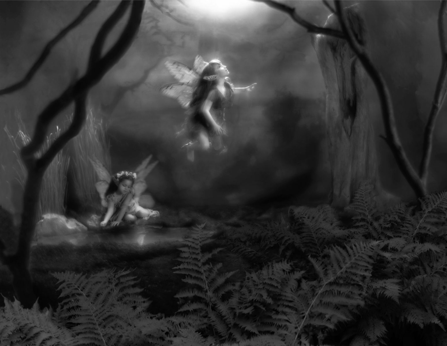 1r182_moonlight_faeries.jpg