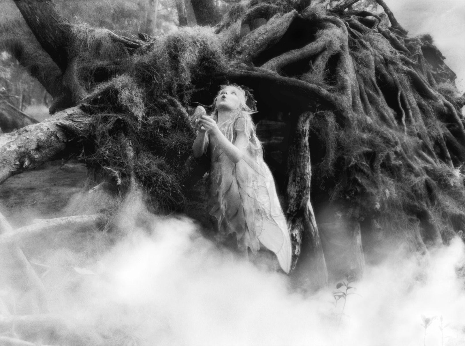 1r205_fog_faerie.jpg