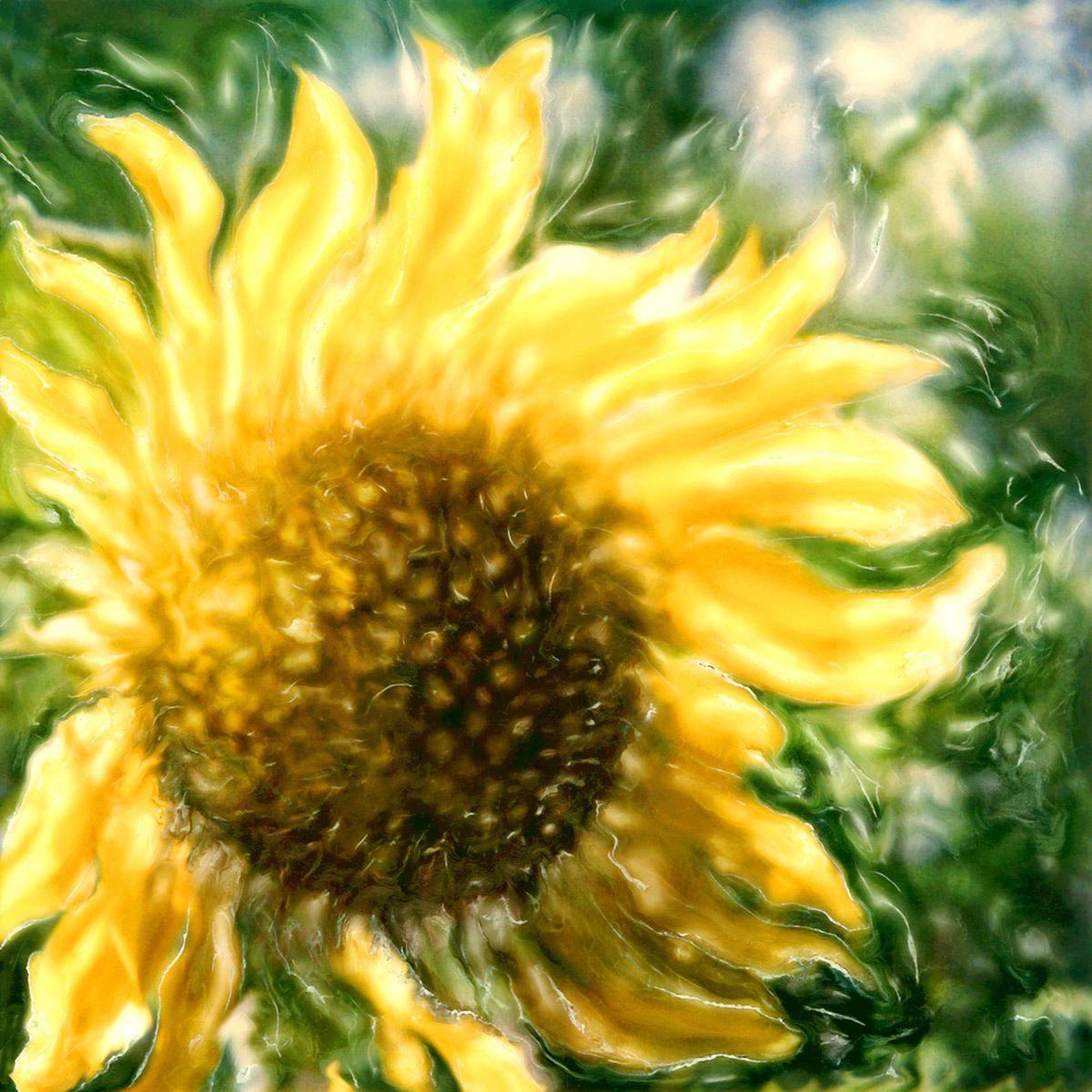 1sunflower1.jpg