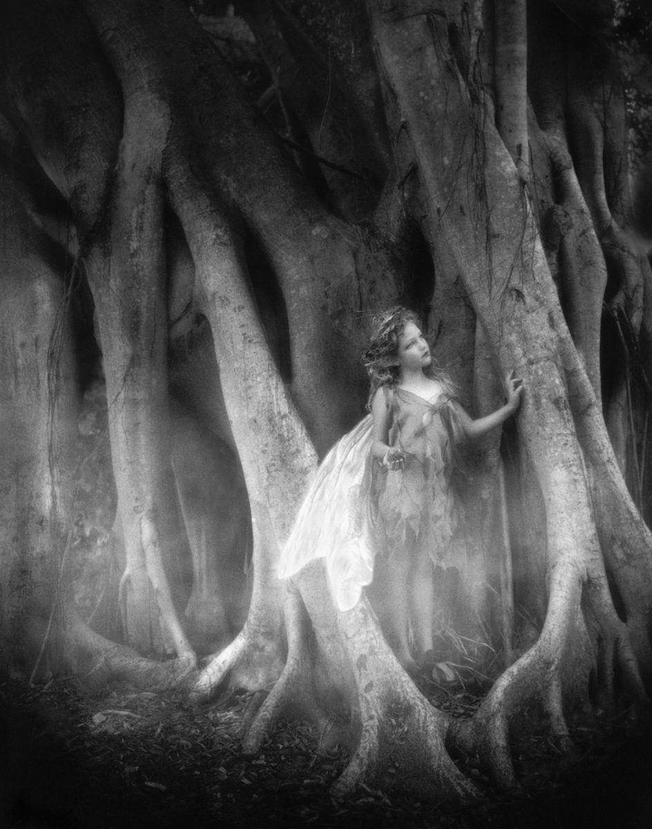 1r101_victorian_faerie_.jpg