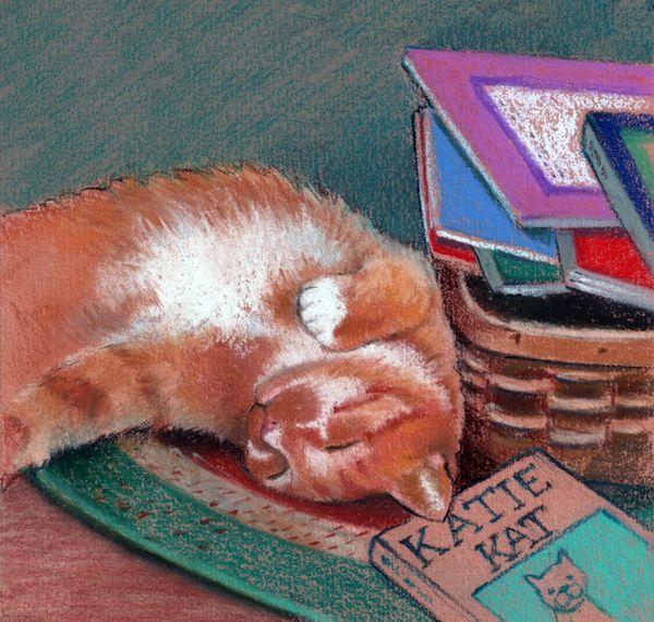 cat sleeping workbook.jpg