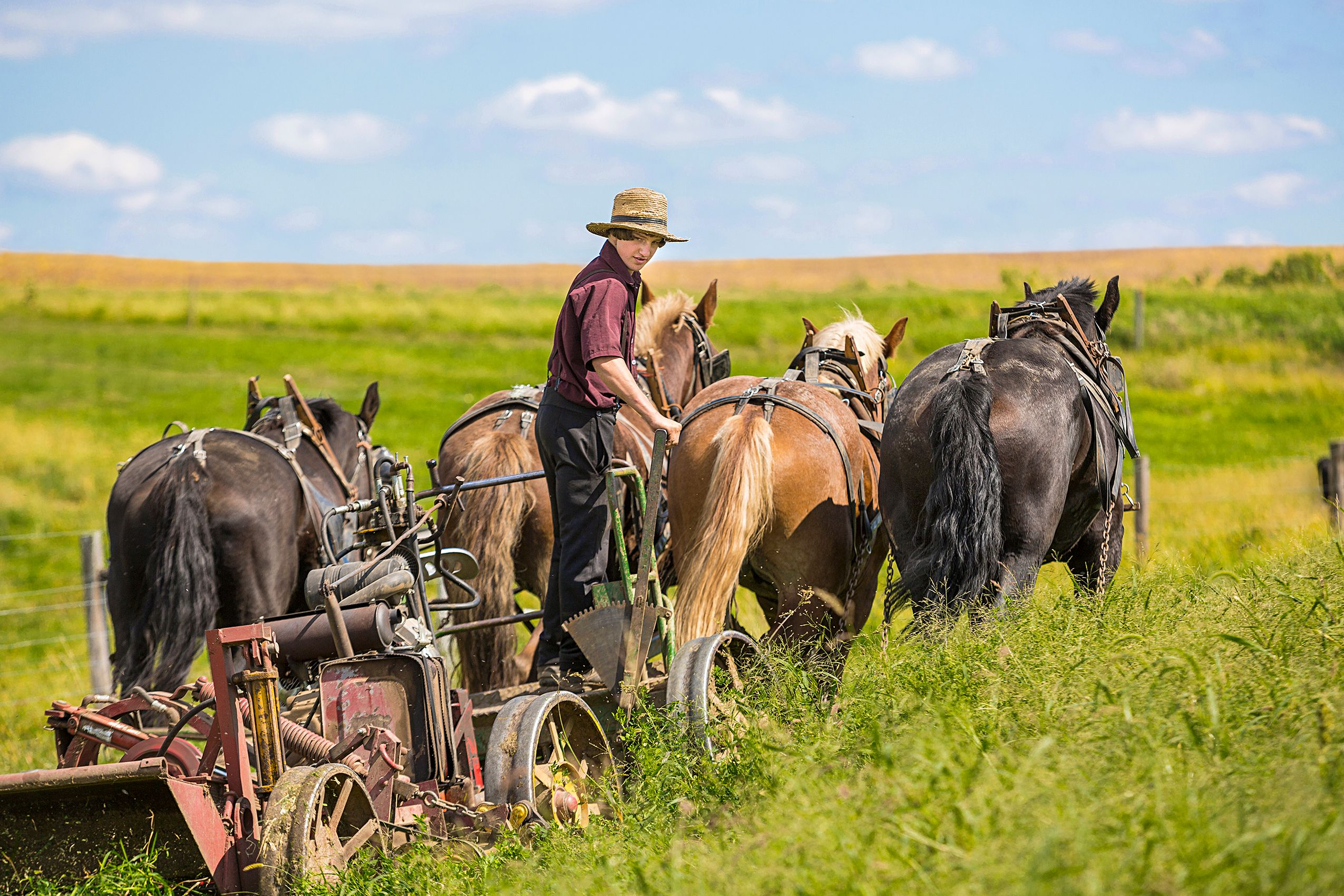 Amish_Boy_HARP8179_F.jpg