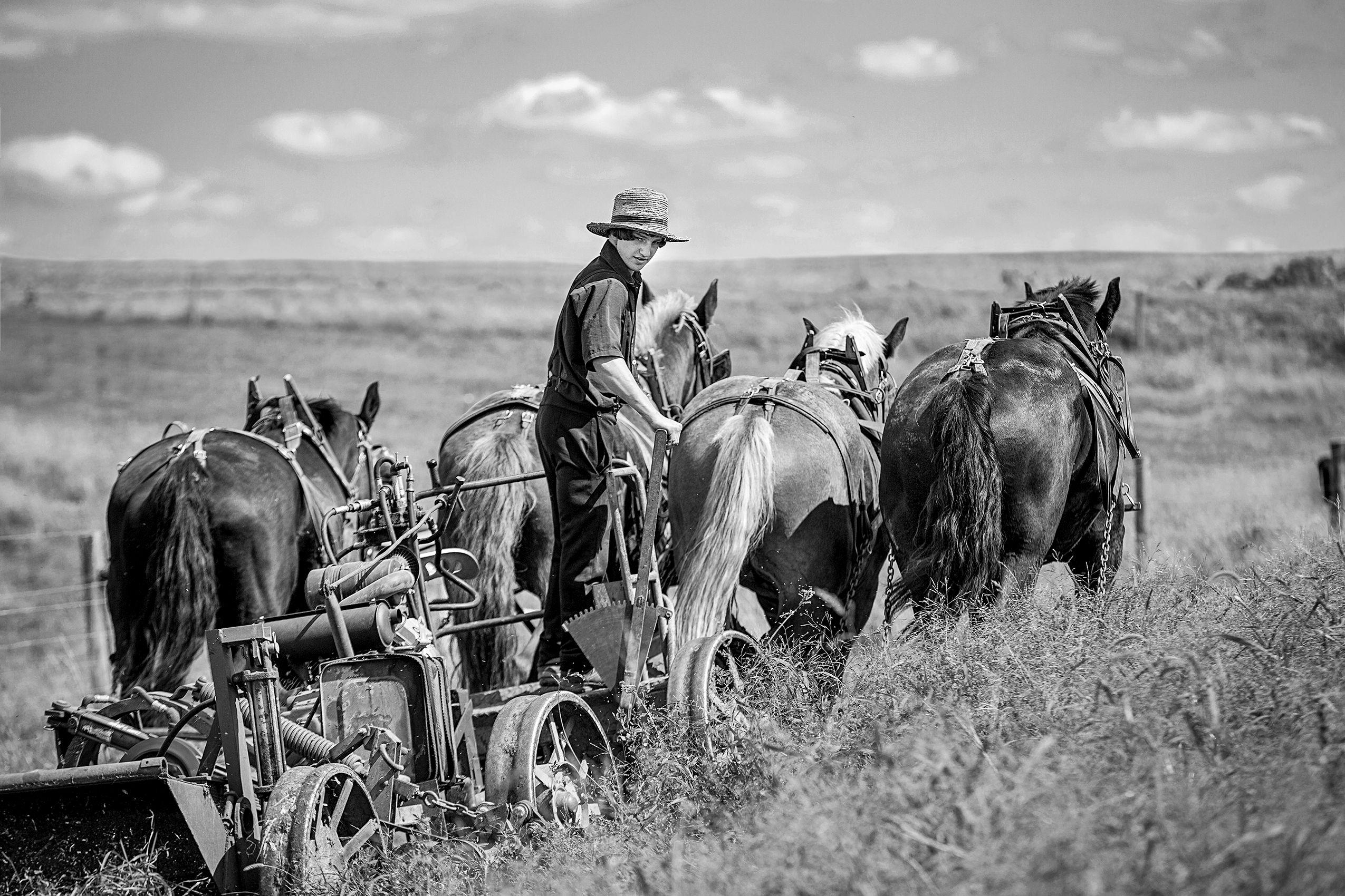 Amish_Boy_HARP8179_BW_FW.jpg