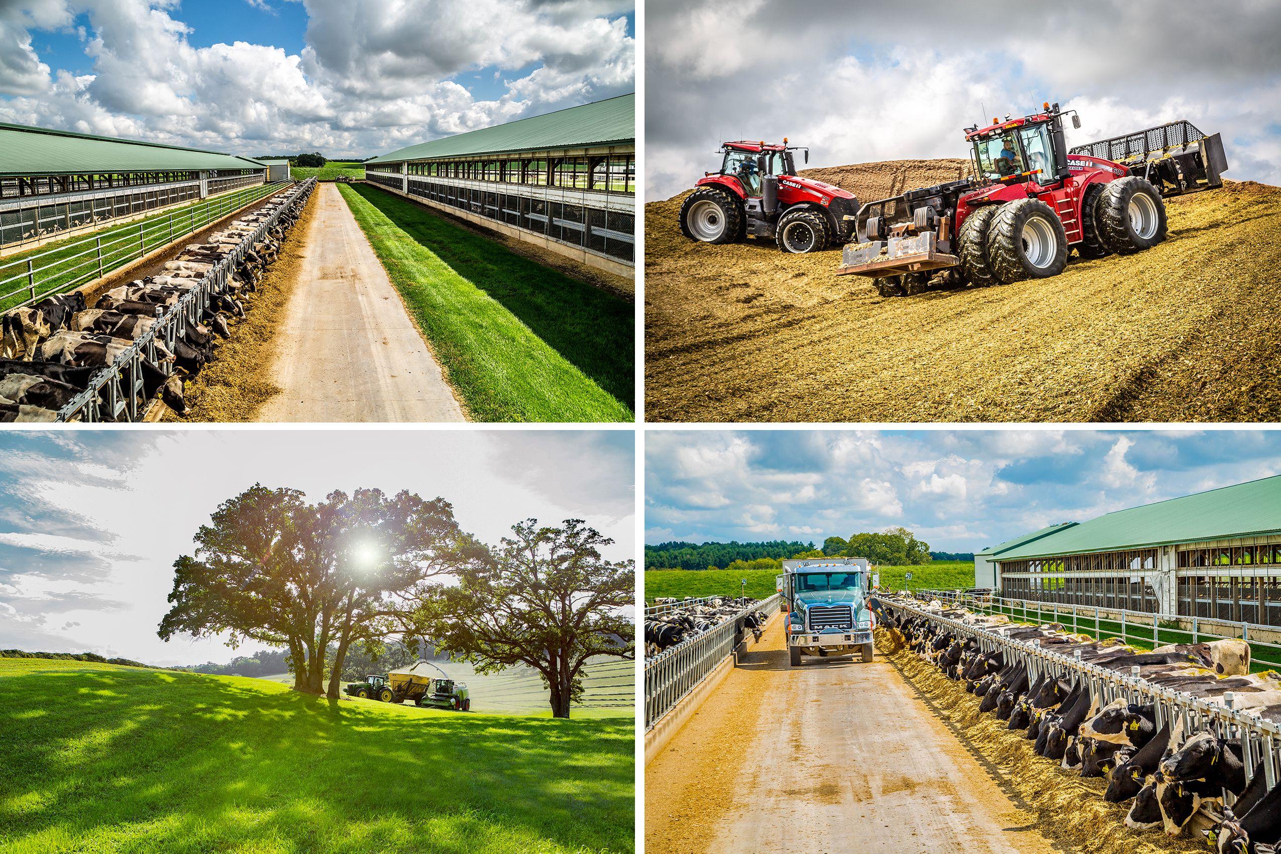 Farm_Trucks_1_combo_W_F.jpg