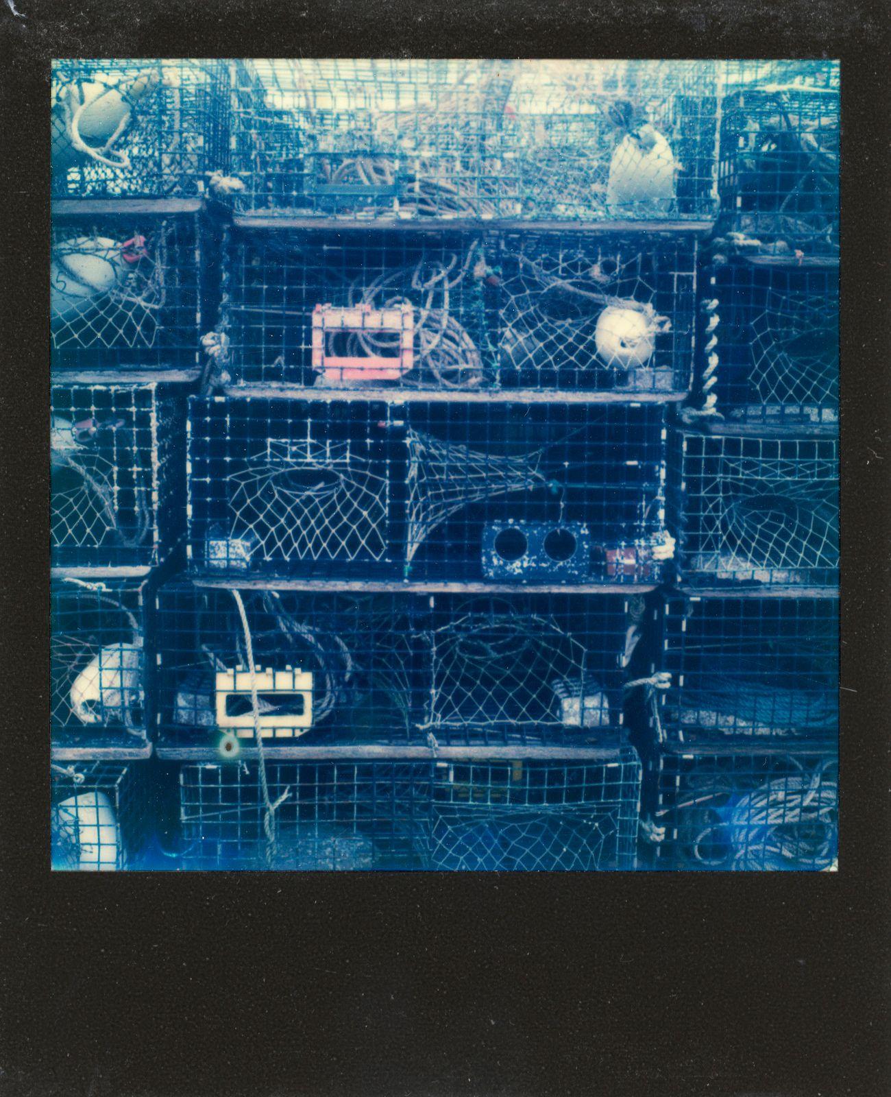 polaroid-0025b.JPG