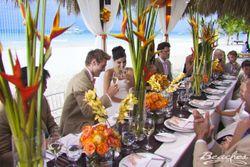 Hoopes Travel | Wedding Wisdom | Beaches Resort