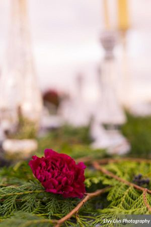 Salt_Air_Wedding_Shoot_Saltair_Resort_Salt_Lake_City_Utah_Elegant_Table_Setting_Burgundy_Evergreen_Decor.jpg